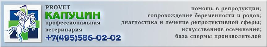 Ветеринарная клиника Капуцин